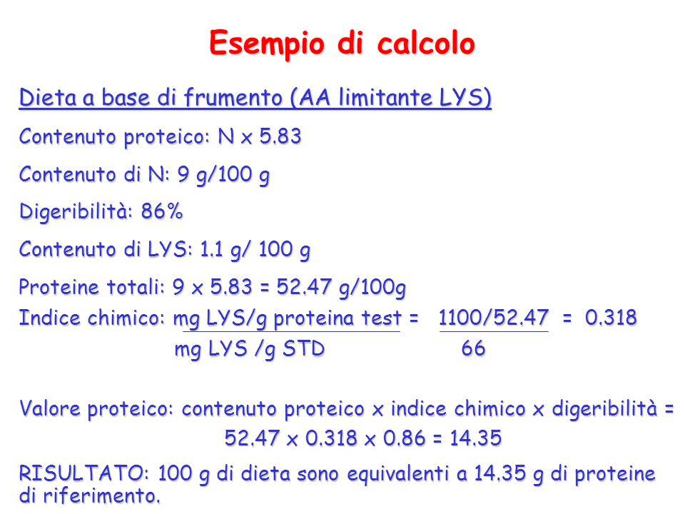 Esempio di calcolo Dieta a base di frumento (AA limitante LYS)