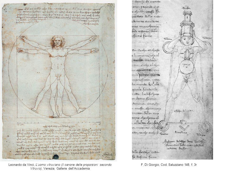 Leonardo da Vinci, L'uomo vitruviano (il canone delle proporzioni secondo Vitruvio). Venezia, Gallerie dell'Accademia