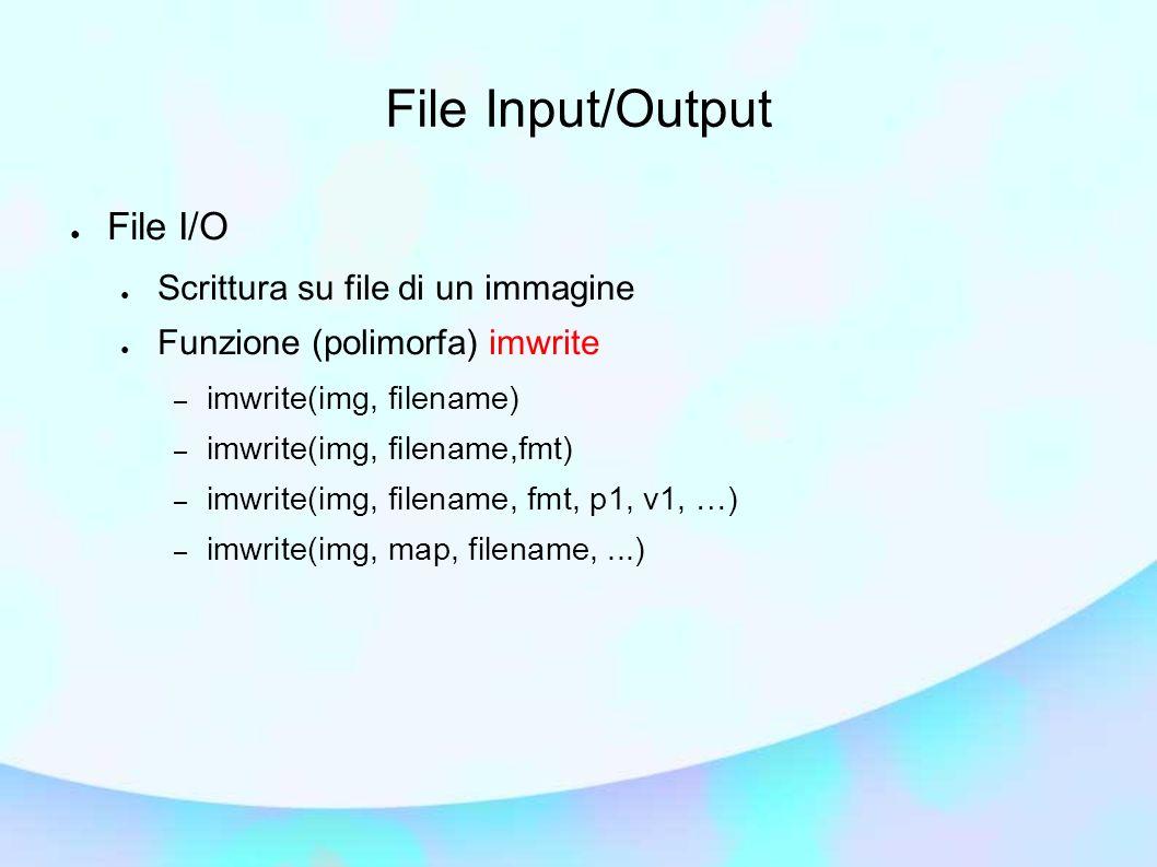 File Input/Output File I/O Scrittura su file di un immagine