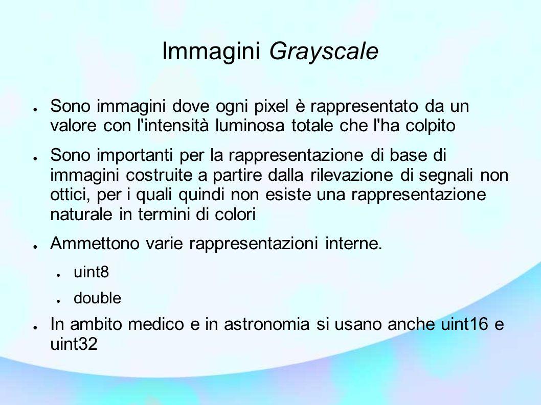 Immagini Grayscale Sono immagini dove ogni pixel è rappresentato da un valore con l intensità luminosa totale che l ha colpito.