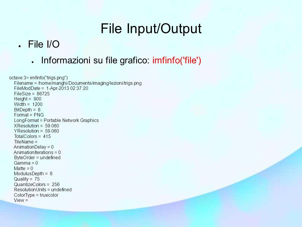 File Input/Output File I/O