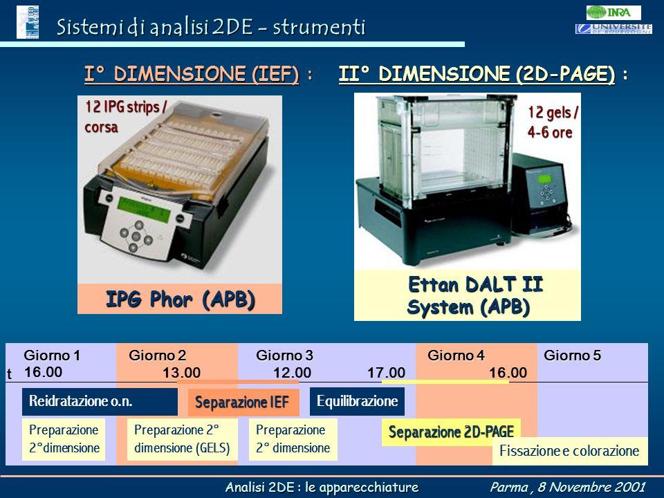 Ettan DALT II System (APB)