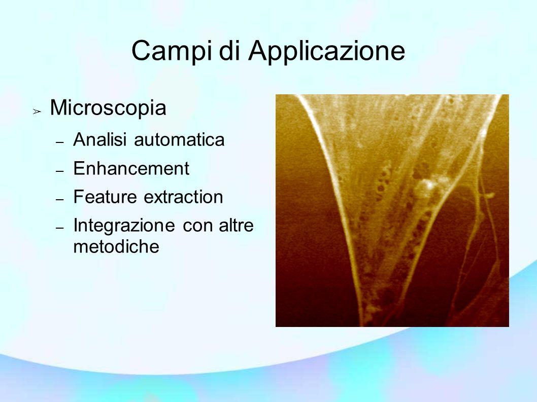 Campi di Applicazione Microscopia Analisi automatica Enhancement