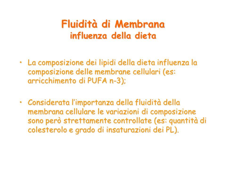 Fluidità di Membrana influenza della dieta
