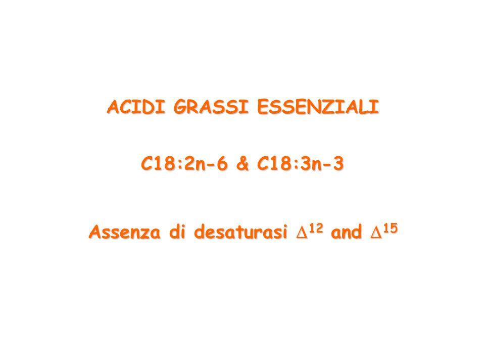 ACIDI GRASSI ESSENZIALI Assenza di desaturasi 12 and 15