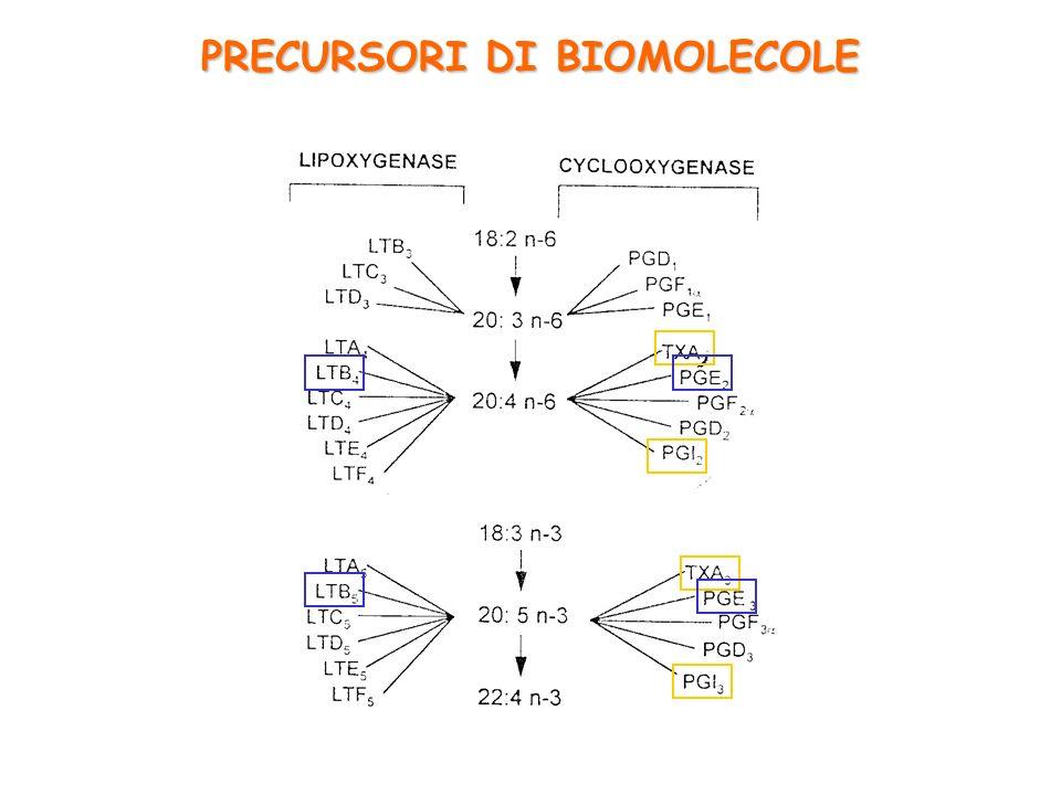 PRECURSORI DI BIOMOLECOLE