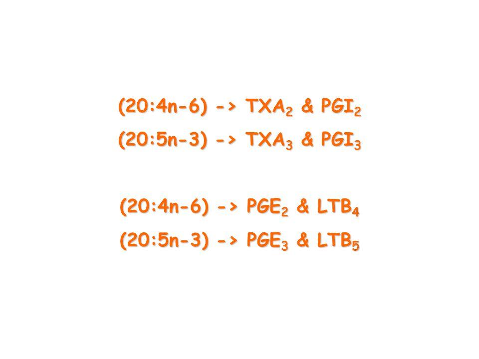 (20:4n-6) -> TXA2 & PGI2 (20:5n-3) -> TXA3 & PGI3 (20:4n-6) -> PGE2 & LTB4 (20:5n-3) -> PGE3 & LTB5