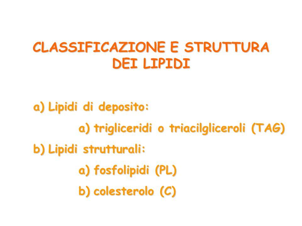 CLASSIFICAZIONE E STRUTTURA DEI LIPIDI