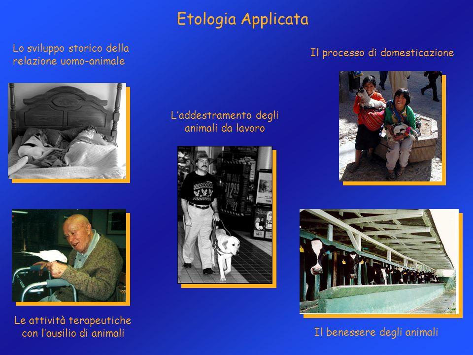 Etologia Applicata Lo sviluppo storico della relazione uomo-animale