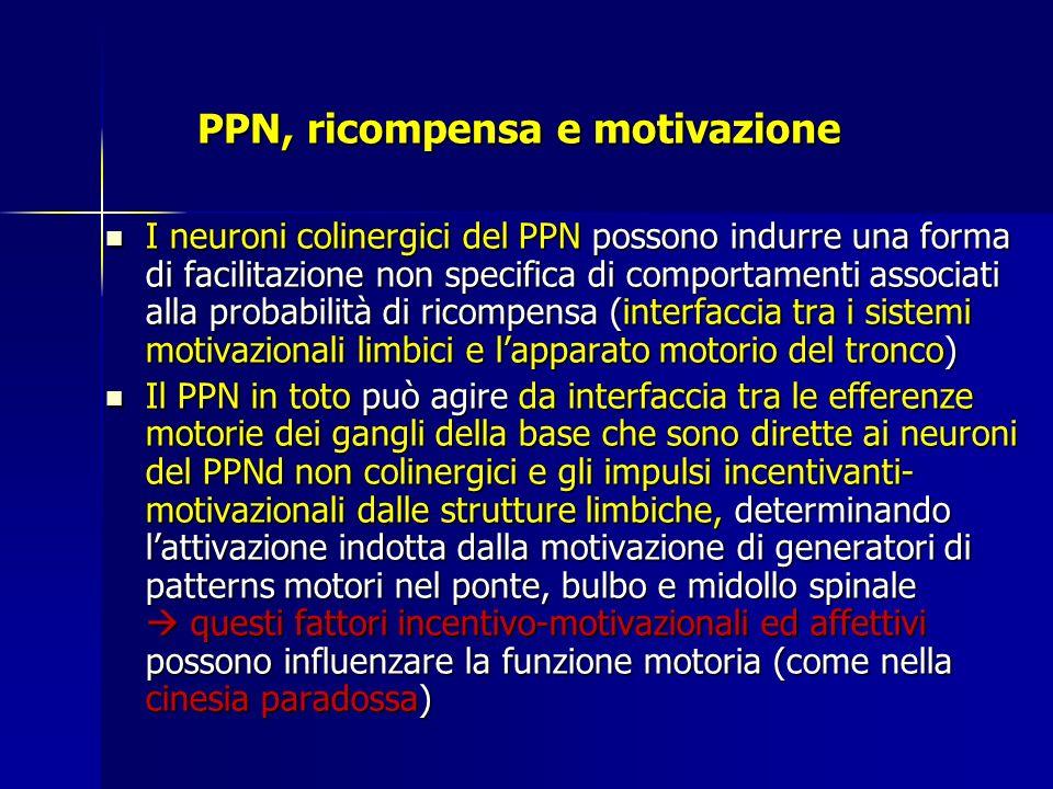 PPN, ricompensa e motivazione