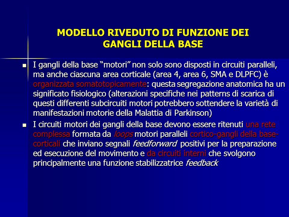 MODELLO RIVEDUTO DI FUNZIONE DEI GANGLI DELLA BASE