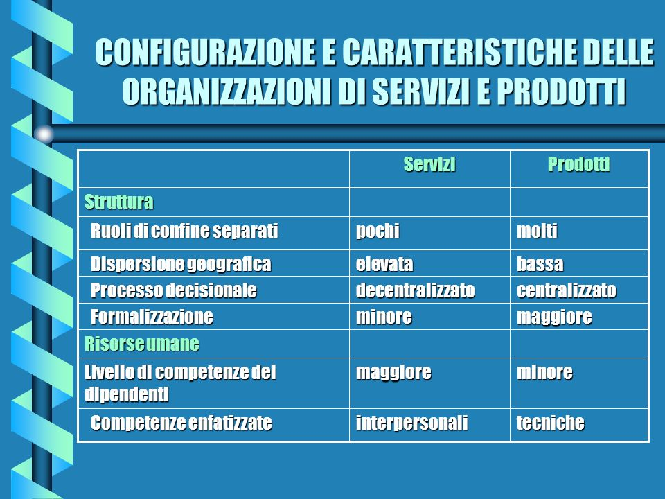 CONFIGURAZIONE E CARATTERISTICHE DELLE ORGANIZZAZIONI DI SERVIZI E PRODOTTI