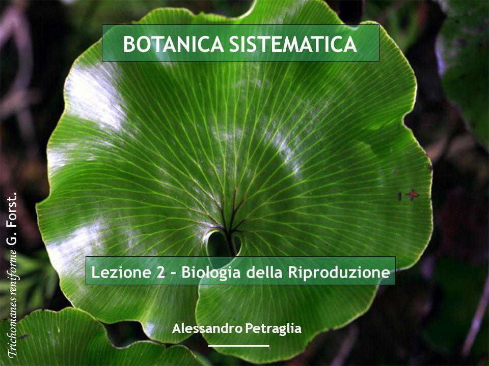 Lezione 2 – Biologia della Riproduzione