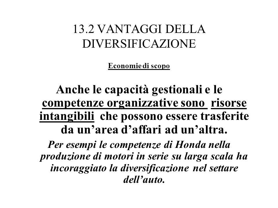 13.2 VANTAGGI DELLA DIVERSIFICAZIONE