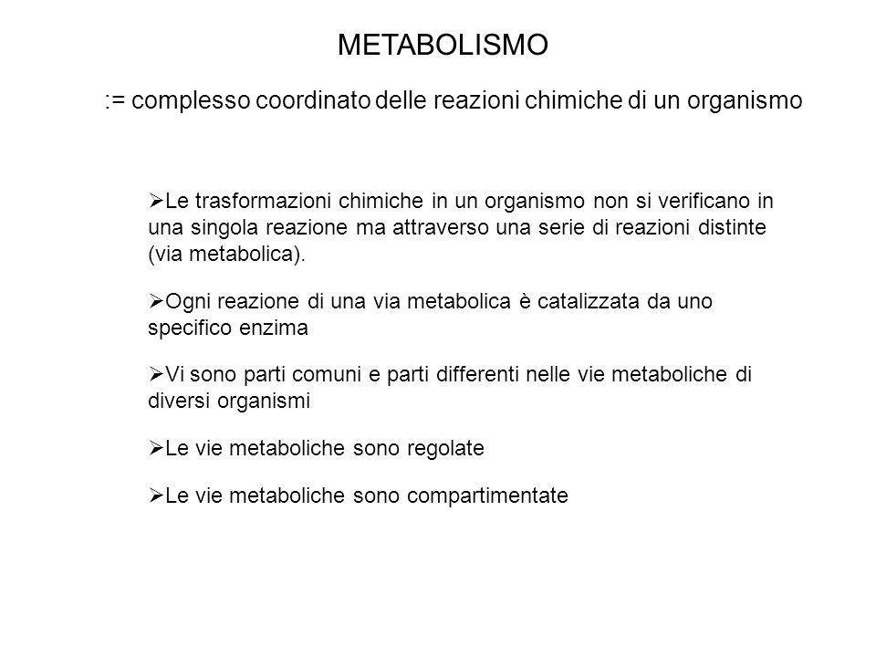 METABOLISMO:= complesso coordinato delle reazioni chimiche di un organismo.