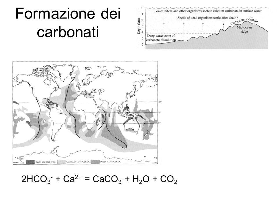 Formazione dei carbonati