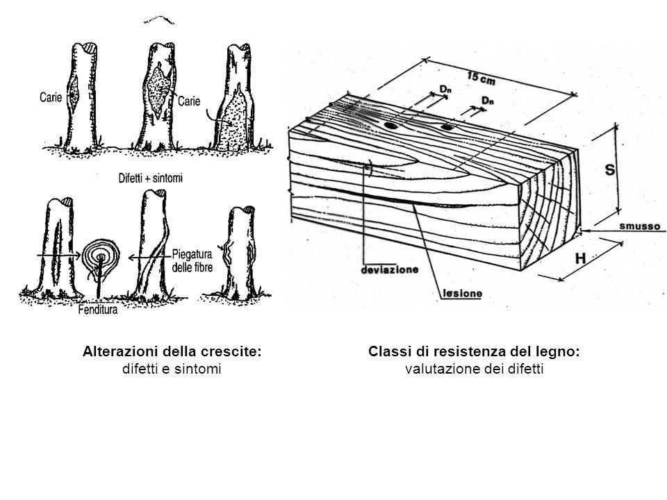 Alterazioni della crescite: Classi di resistenza del legno: