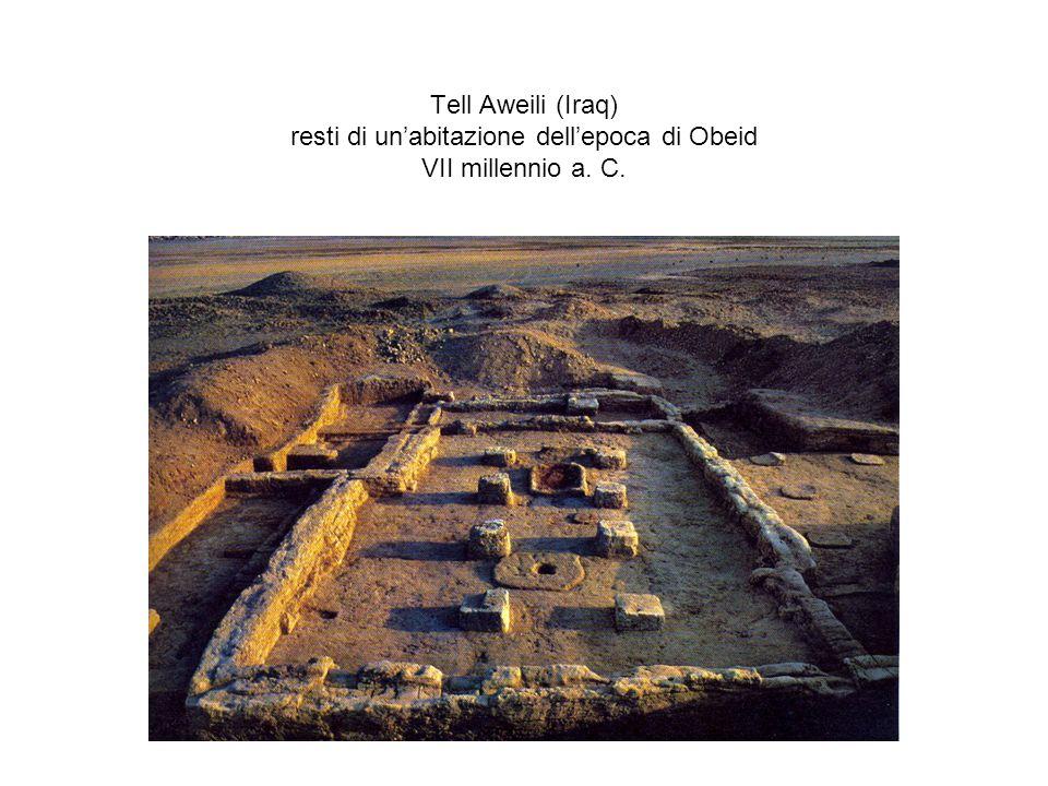 Tell Aweili (Iraq) resti di un'abitazione dell'epoca di Obeid VII millennio a. C.