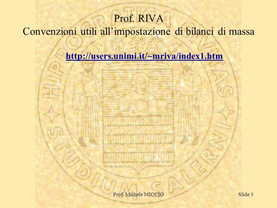 Prof. RIVA Convenzioni utili all'impostazione di bilanci di massa