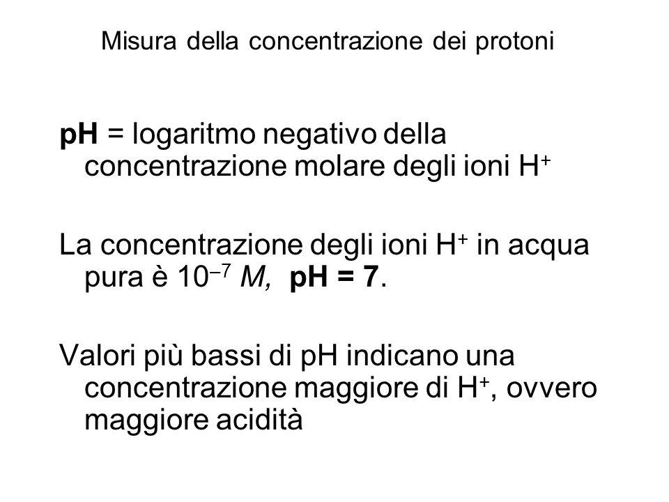pH = logaritmo negativo della concentrazione molare degli ioni H+