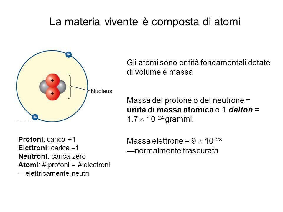 La materia vivente è composta di atomi