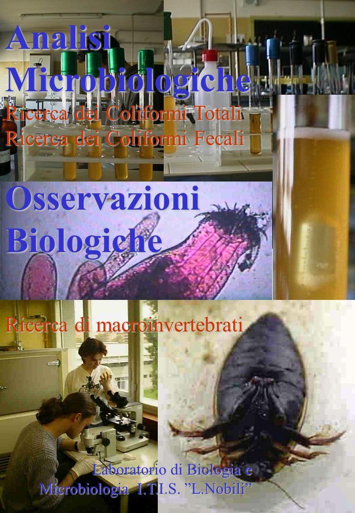 Analisi Microbiologiche Ricerca dei Coliformi Totali Ricerca dei Coliformi Fecali Osservazioni Biologiche