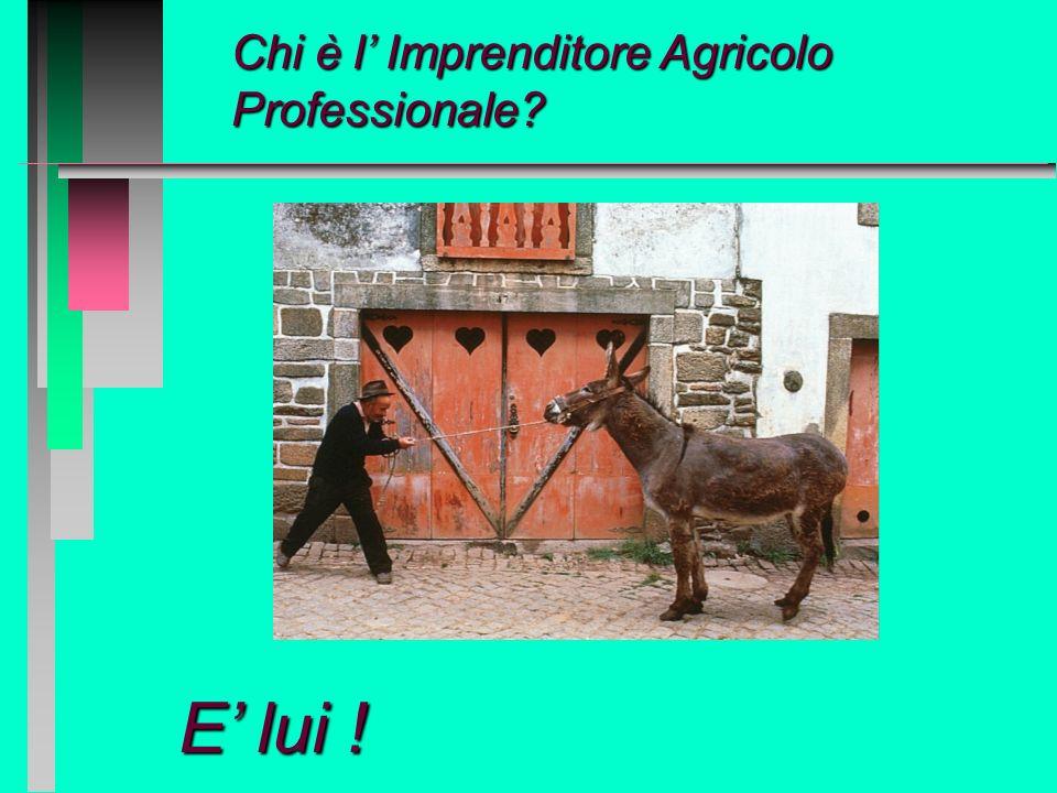 Chi è l' Imprenditore Agricolo Professionale