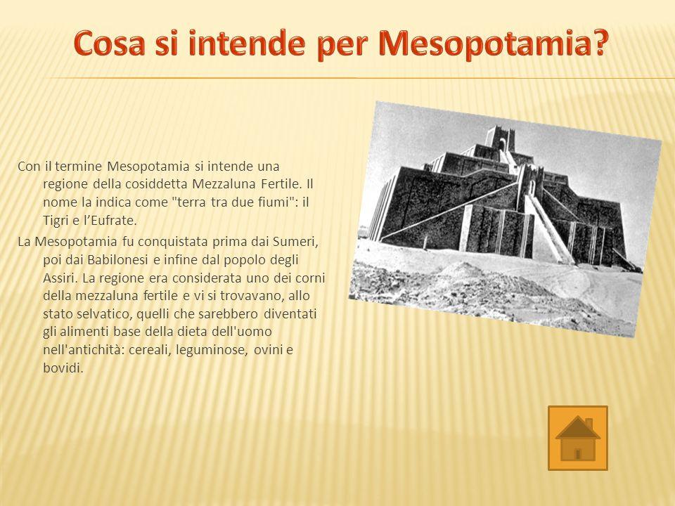 Cosa si intende per Mesopotamia
