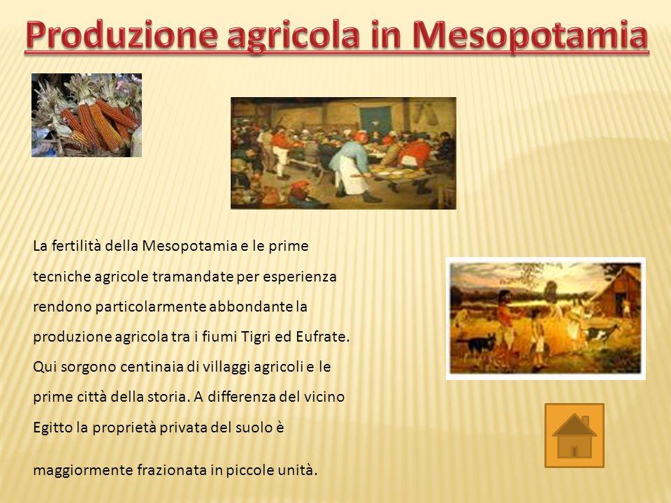Produzione agricola in Mesopotamia