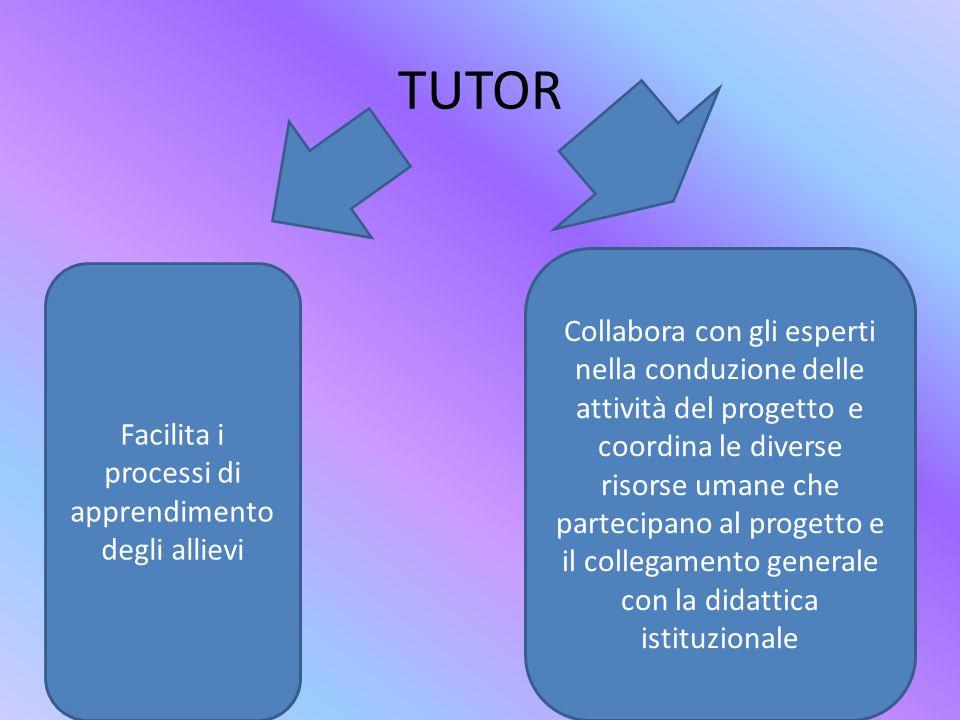 Facilita i processi di apprendimento degli allievi