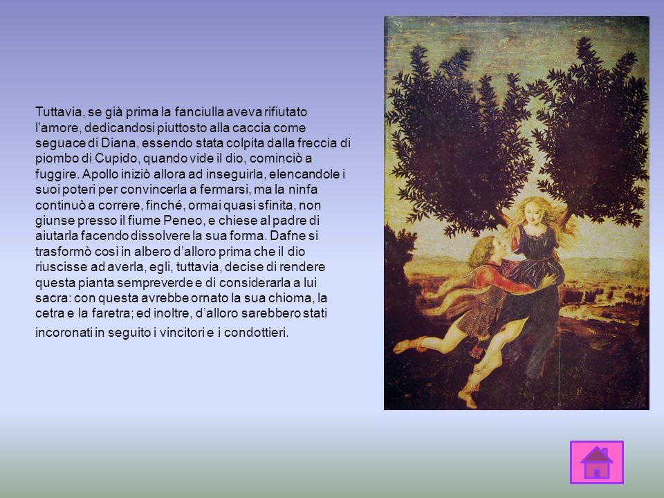 Tuttavia, se già prima la fanciulla aveva rifiutato l'amore, dedicandosi piuttosto alla caccia come seguace di Diana, essendo stata colpita dalla freccia di piombo di Cupido, quando vide il dio, cominciò a fuggire.