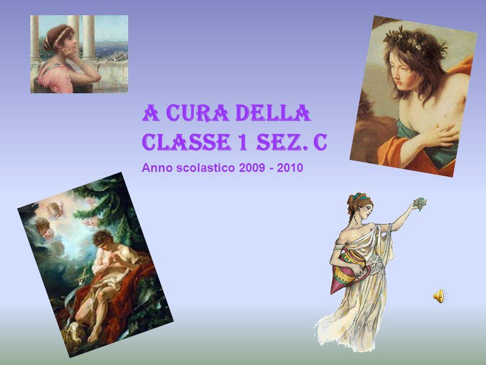 A CURA DELLA CLASSE 1 sez. c