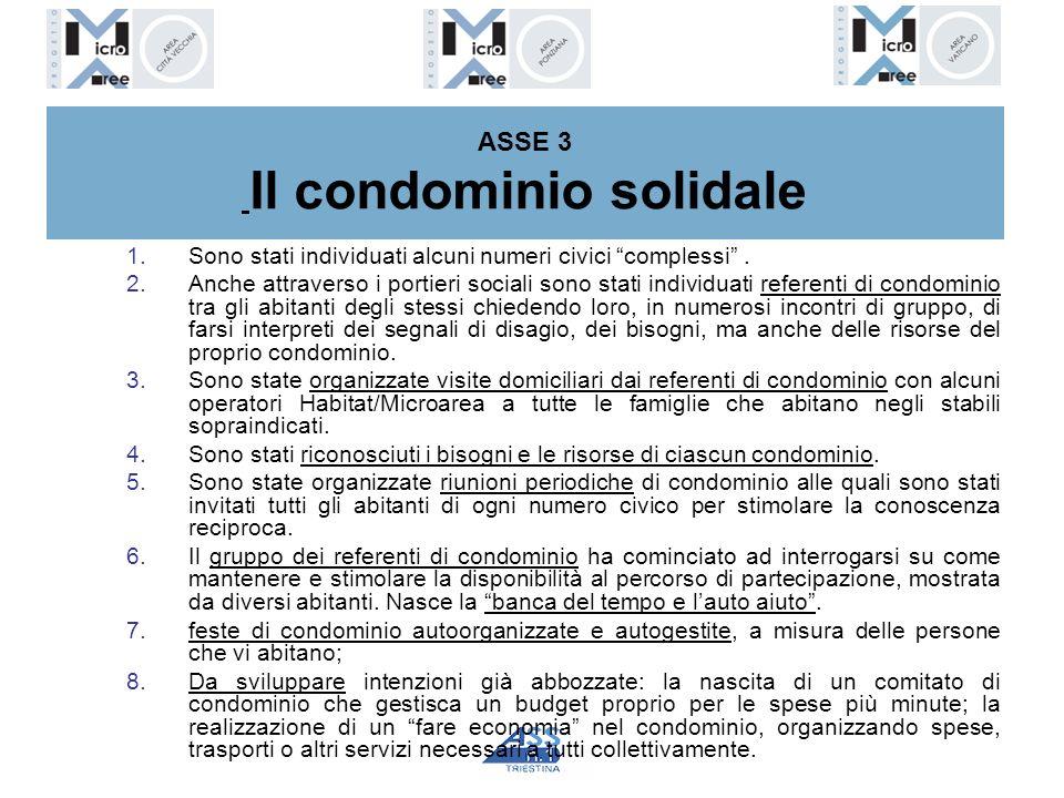 ASSE 3 Il condominio solidale