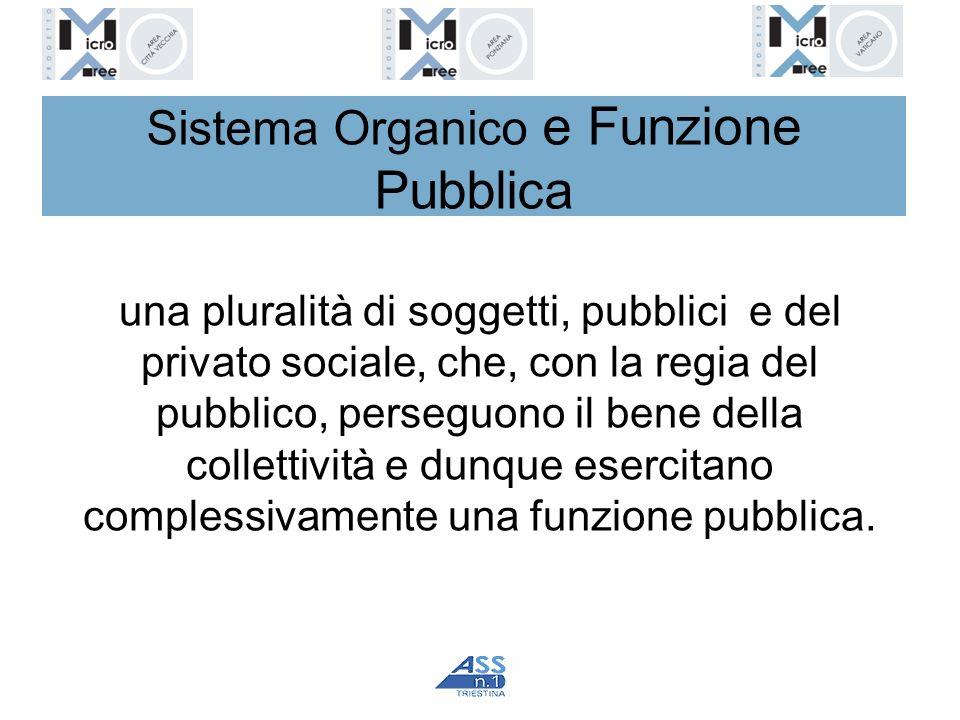 Sistema Organico e Funzione Pubblica
