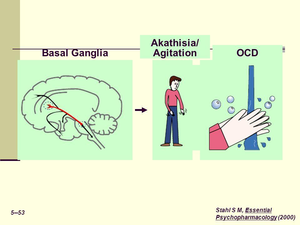 OCD Akathisia/ Agitation Basal Ganglia