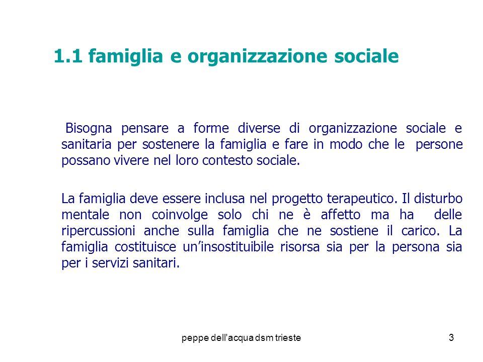 1.1 famiglia e organizzazione sociale