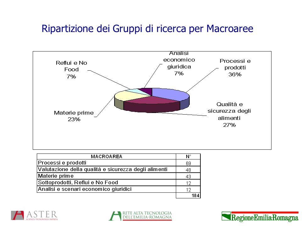 Ripartizione dei Gruppi di ricerca per Macroaree