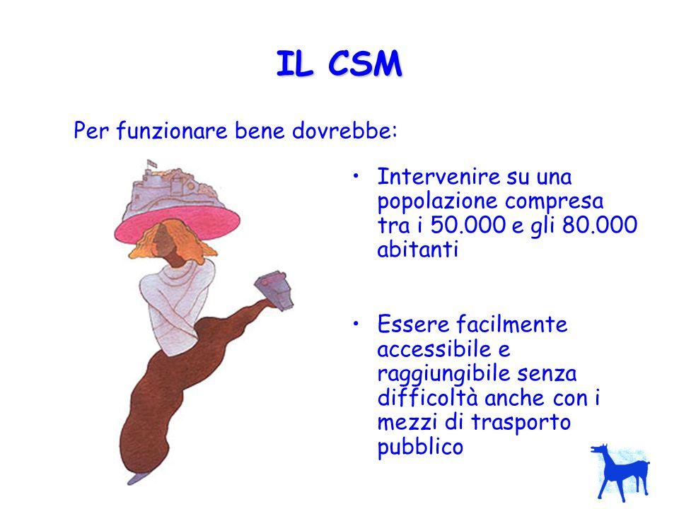 IL CSM Per funzionare bene dovrebbe: