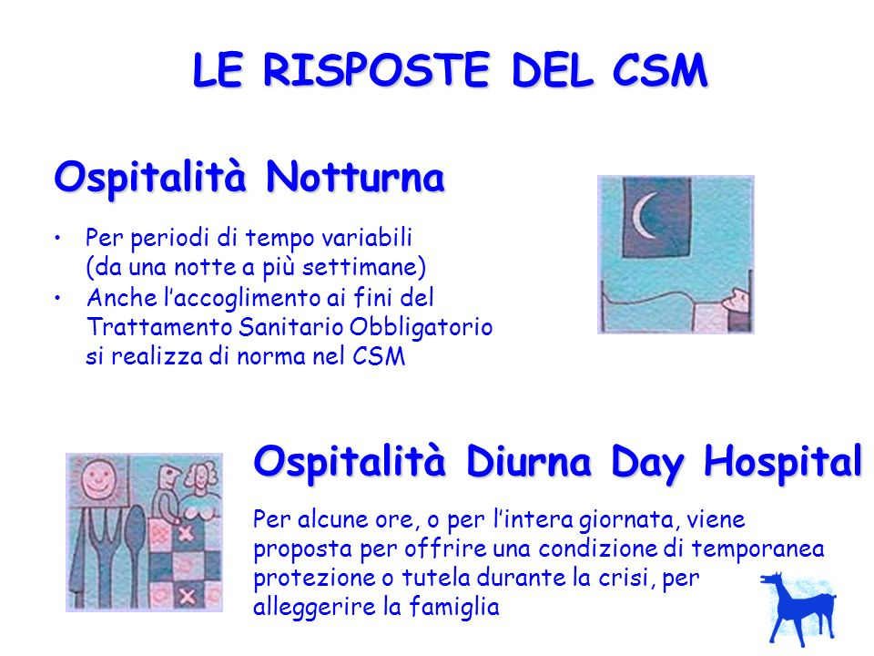 LE RISPOSTE DEL CSM Ospitalità Notturna Ospitalità Diurna Day Hospital
