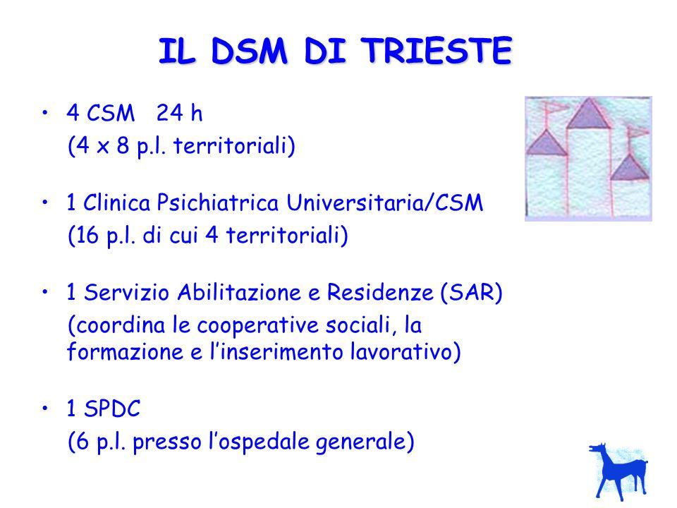IL DSM DI TRIESTE 4 CSM 24 h (4 x 8 p.l. territoriali)