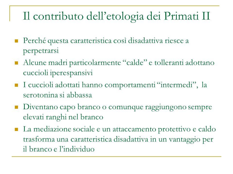 Il contributo dell'etologia dei Primati II