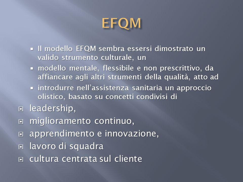 EFQM leadership, miglioramento continuo, apprendimento e innovazione,
