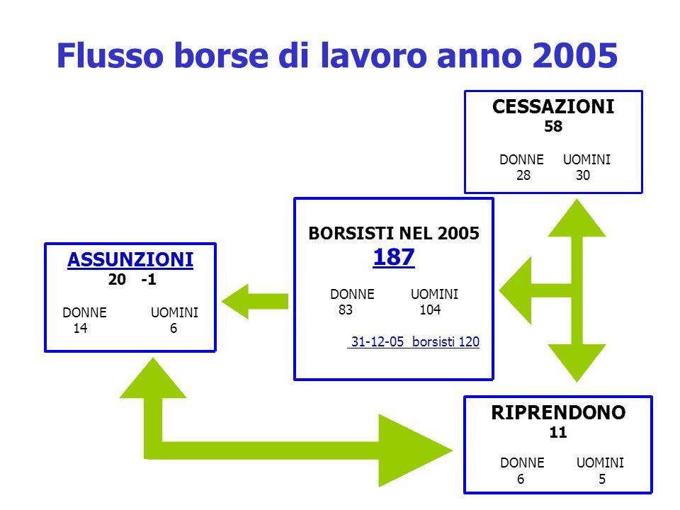 Flusso borse di lavoro anno 2005
