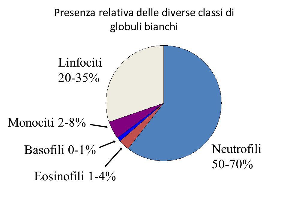 Presenza relativa delle diverse classi di globuli bianchi