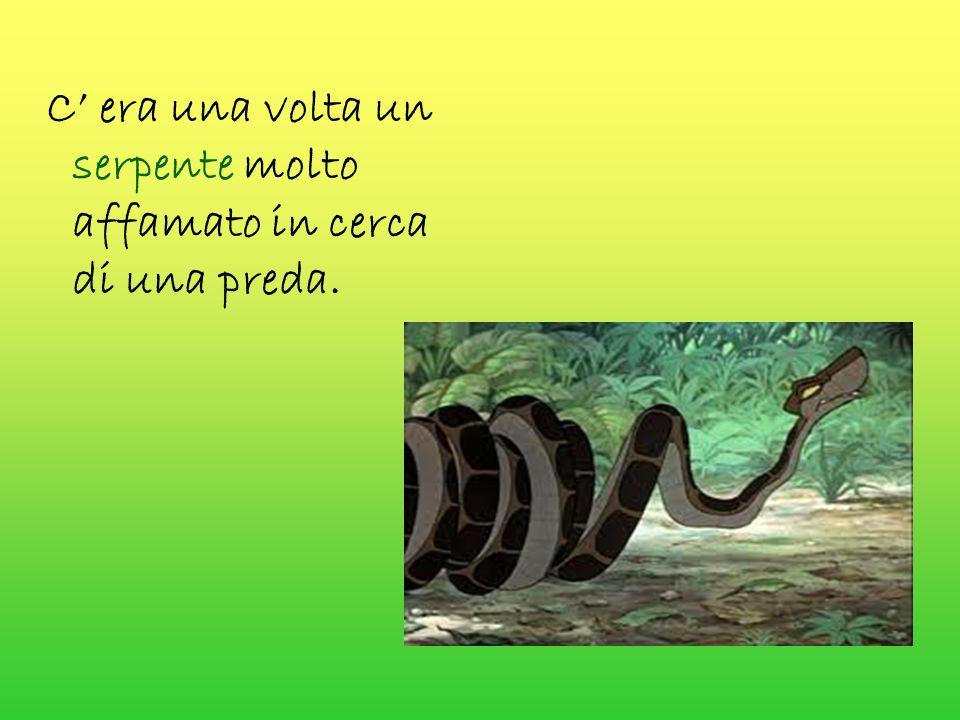 C' era una volta un serpente molto affamato in cerca di una preda.