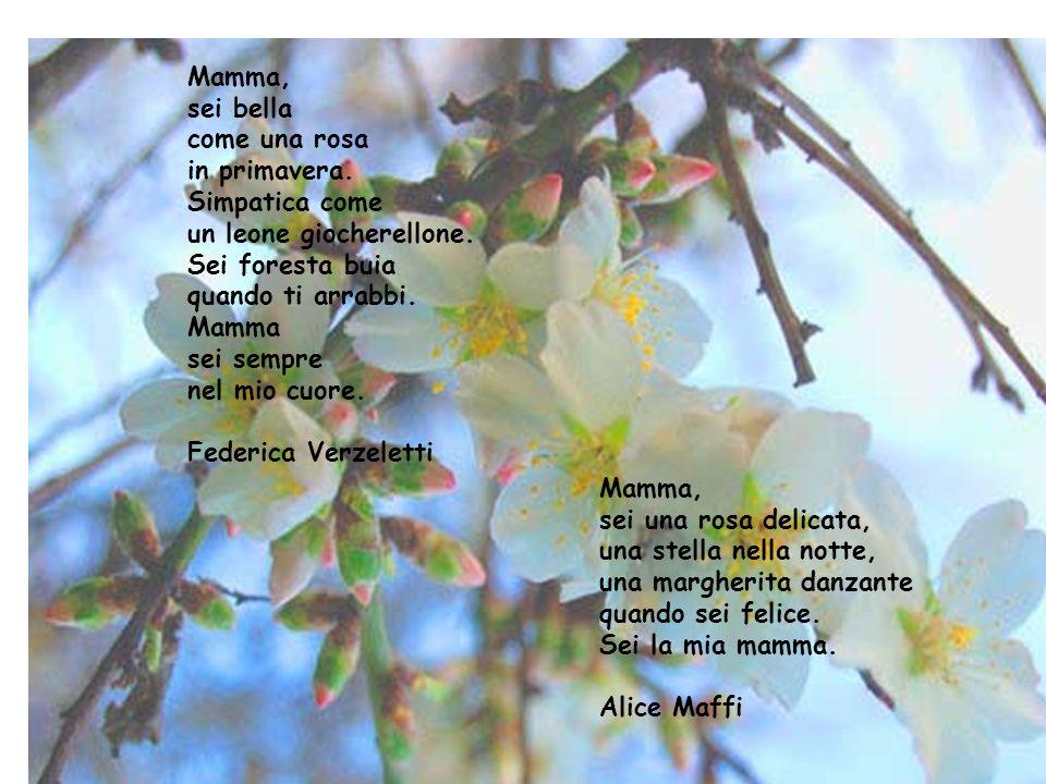 2 Mamma, sei bella come una rosa in primavera. Simpatica come
