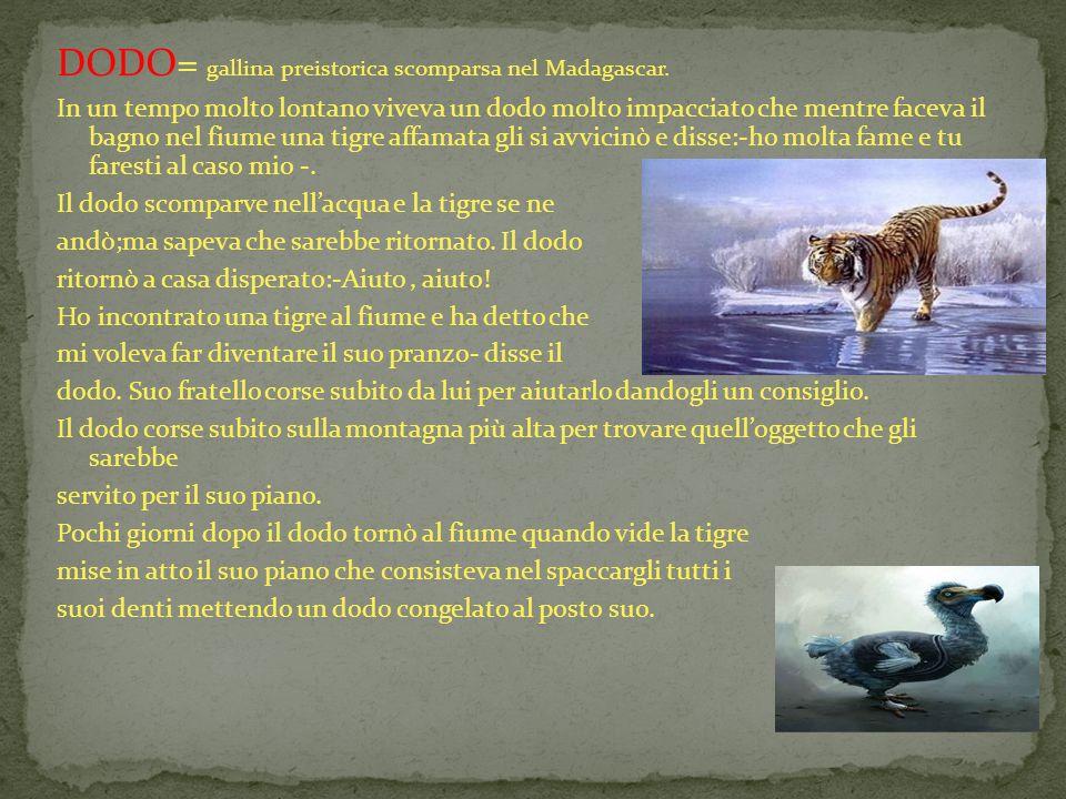 DODO= gallina preistorica scomparsa nel Madagascar.