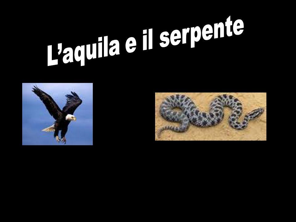 L'aquila e il serpente
