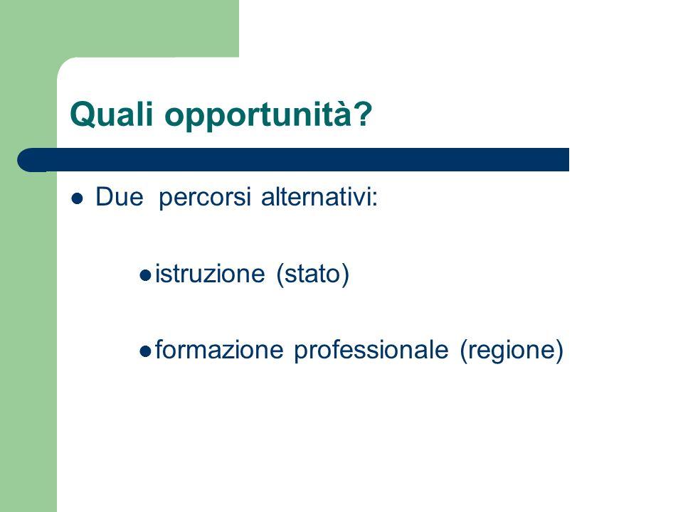 Quali opportunità Due percorsi alternativi: istruzione (stato)