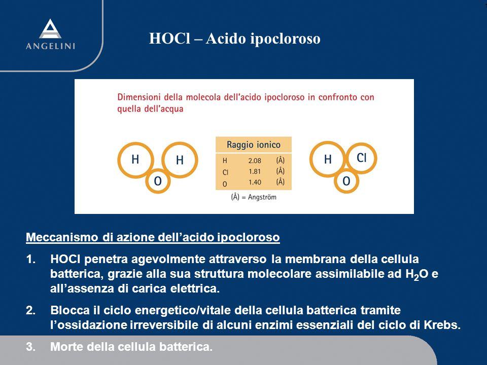 HOCl – Acido ipocloroso